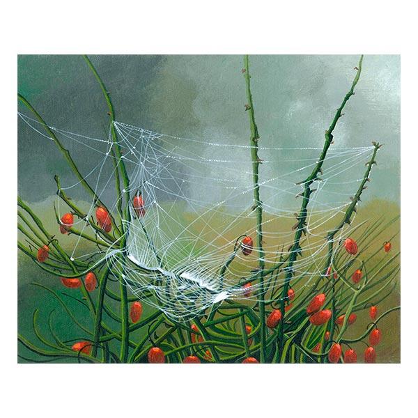 Winter Web